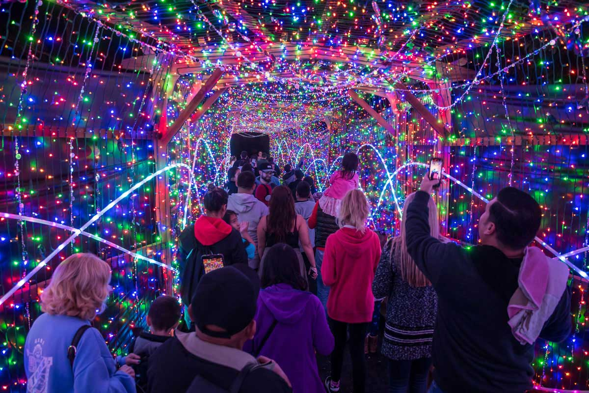 Los Angeles Zoo Lights Holiday Brand Installation   GES Events