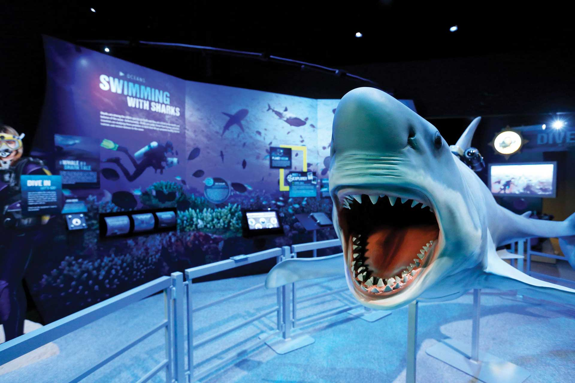 National Geographic shark touring exhibition Earth explorers